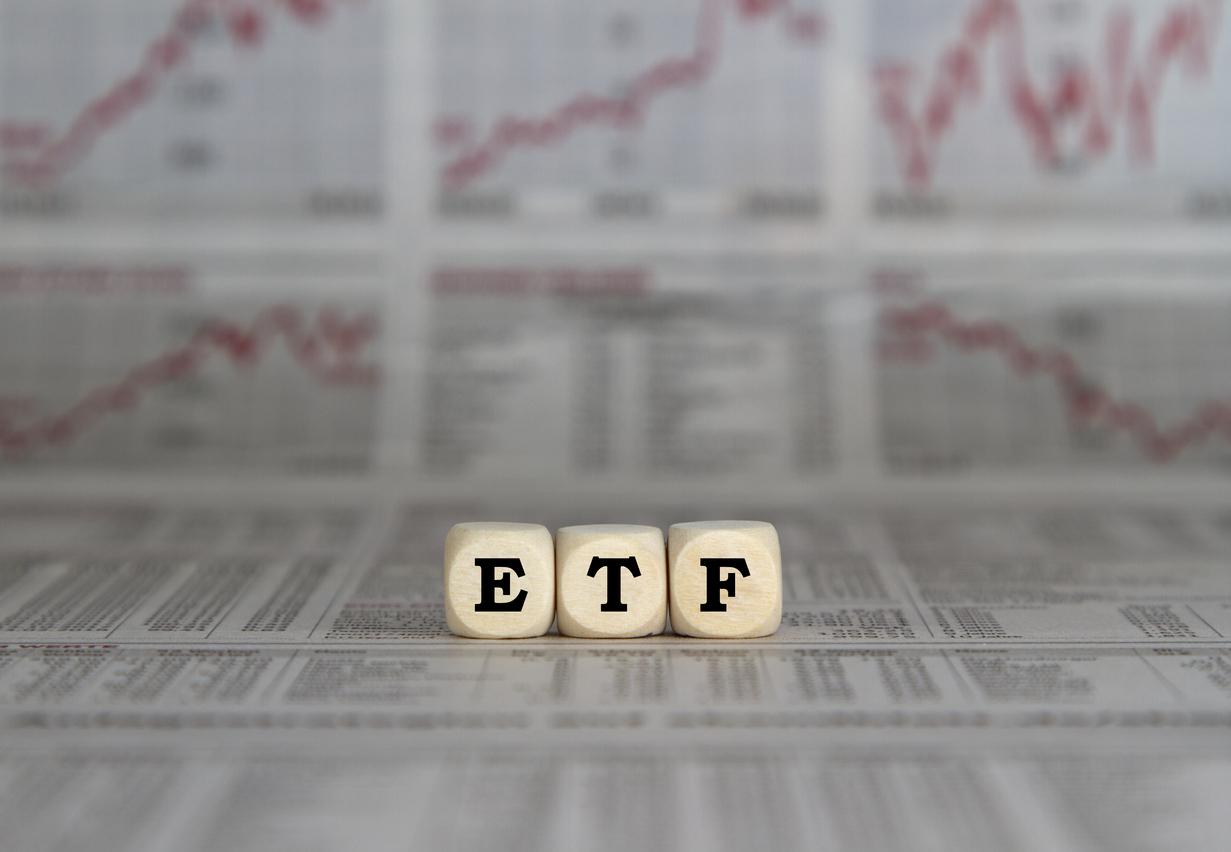 インドの国内ETFである銘柄1549と1678を比較分析。高い乖離率が問題点