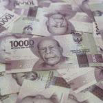 インドネシアルピアの為替相場が比較的安定的な理由を内外要因から徹底分析!